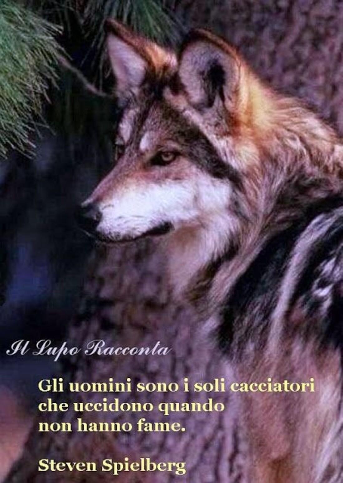 Gli uomini sono i soli cacciatori che uccidono quando non hanno fame. - Steven Spielberg