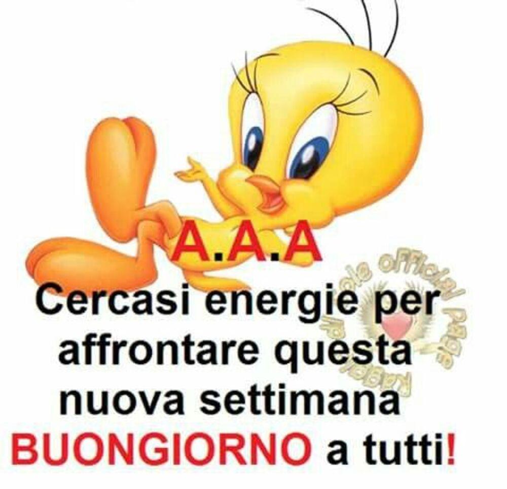 A.A.A. Cercasi energie per affrontare questa nuova settimana Buongiorno a tutti!