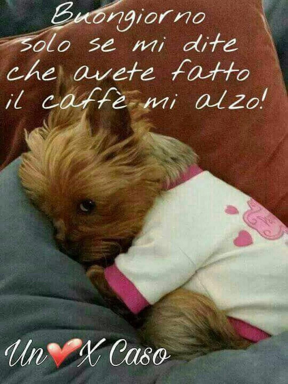 Buongiorno solo se mi dite che avete fatto il caffè, mi alzo!!