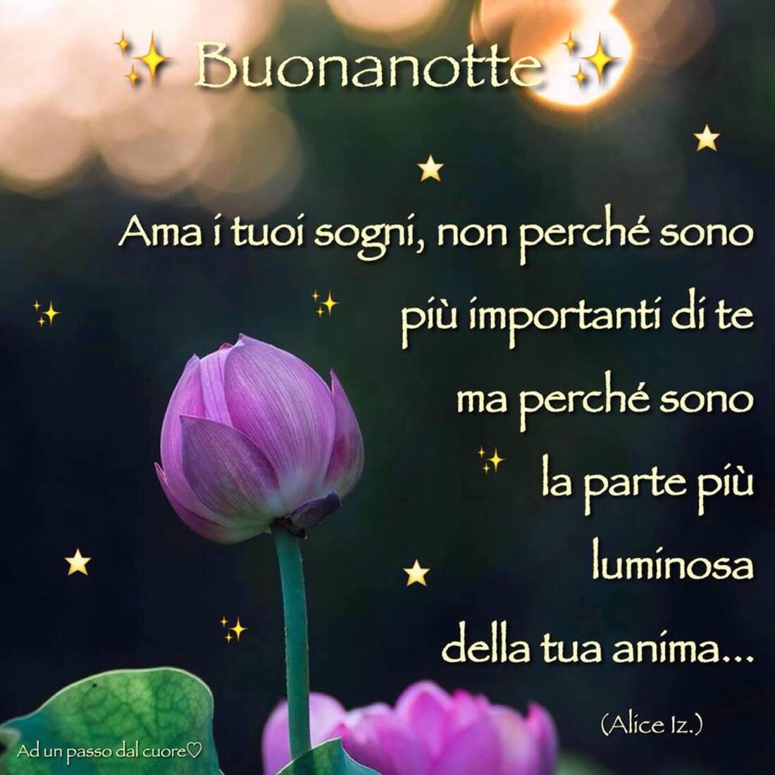 Buonanotte ama i tuoi sogni non perchè sono più importanti di te ma perchè sono la parte più luminosa della tua anima...