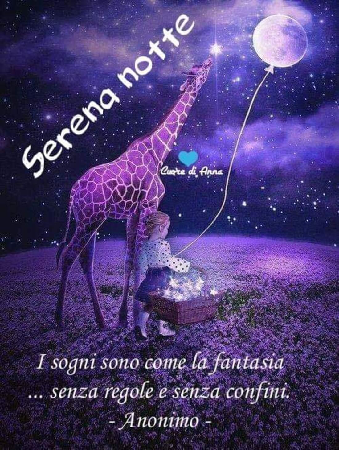 Serena notte i sogni sono la fantasia senza regole e senza confini