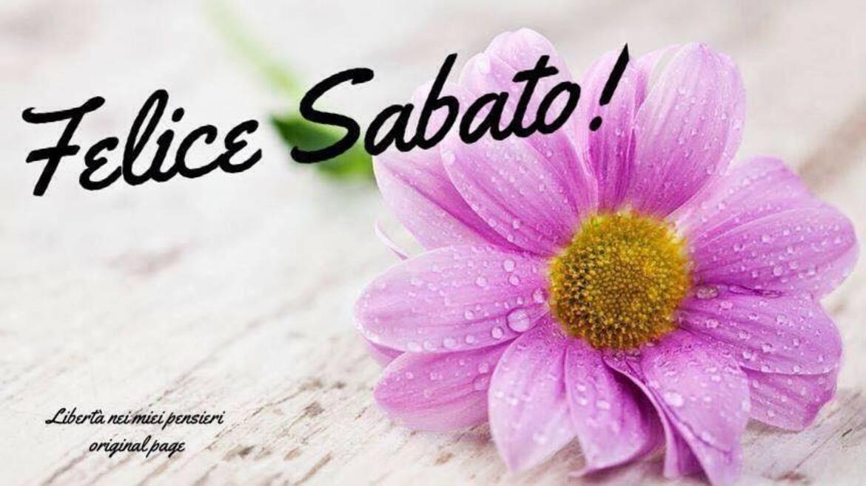 Felice Sabato
