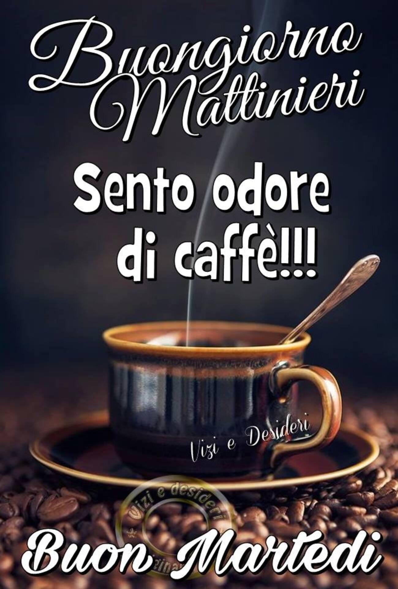 Buongiorno MAttinieri sento odore di caffè!!! Buon Martedì