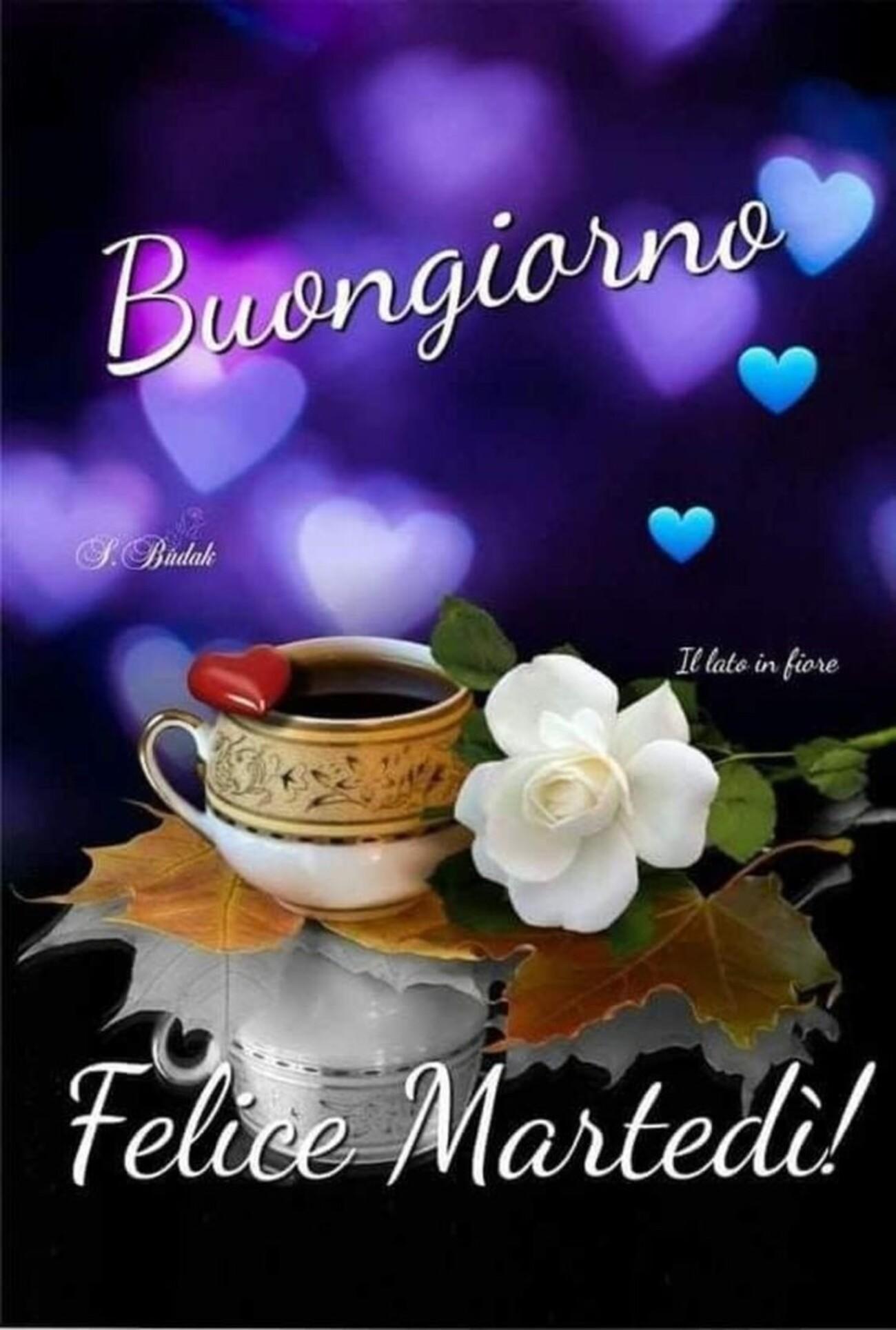 Buongiorno felice martedì