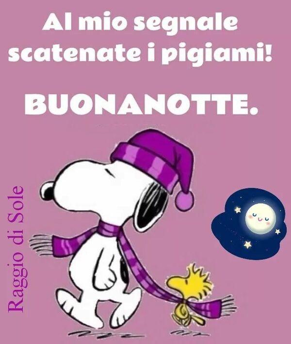 """""""Al mio segnale scatenate i pigiami! BUONANOTTE"""" - Snoopy"""
