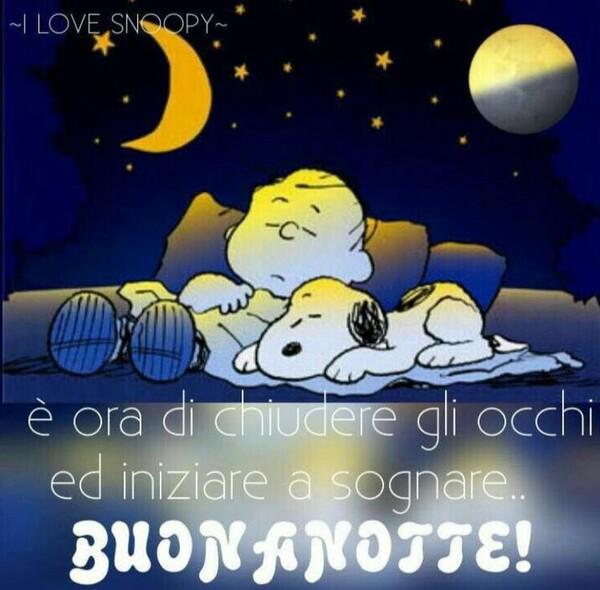 """Snoopy - """"E' ora di chiudere gli occhi ed iniziare a sognare, Buonanotte!"""""""