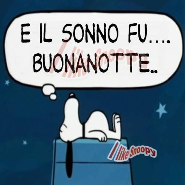 """""""E il sonno fu... BUONANOTTE..."""" - Snoopy"""