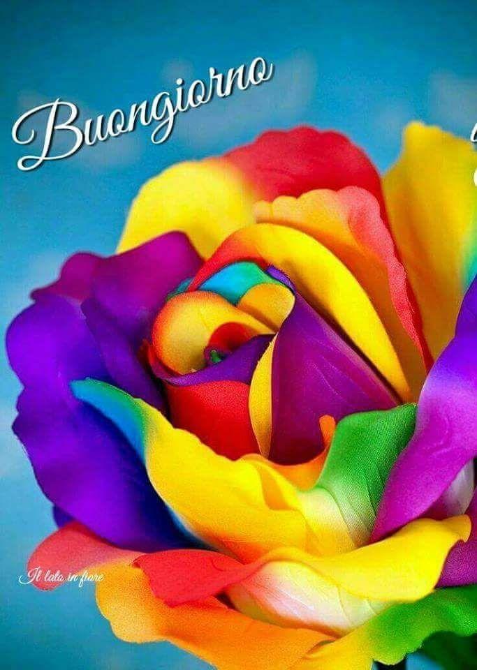 Buongiorno immagini colorate