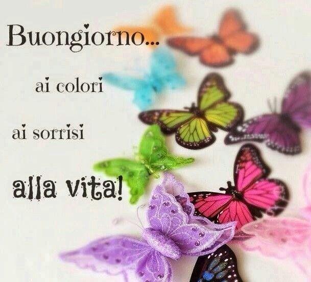 """""""Buongiorno... ai colori, ai sorrisi, alla vita!"""""""