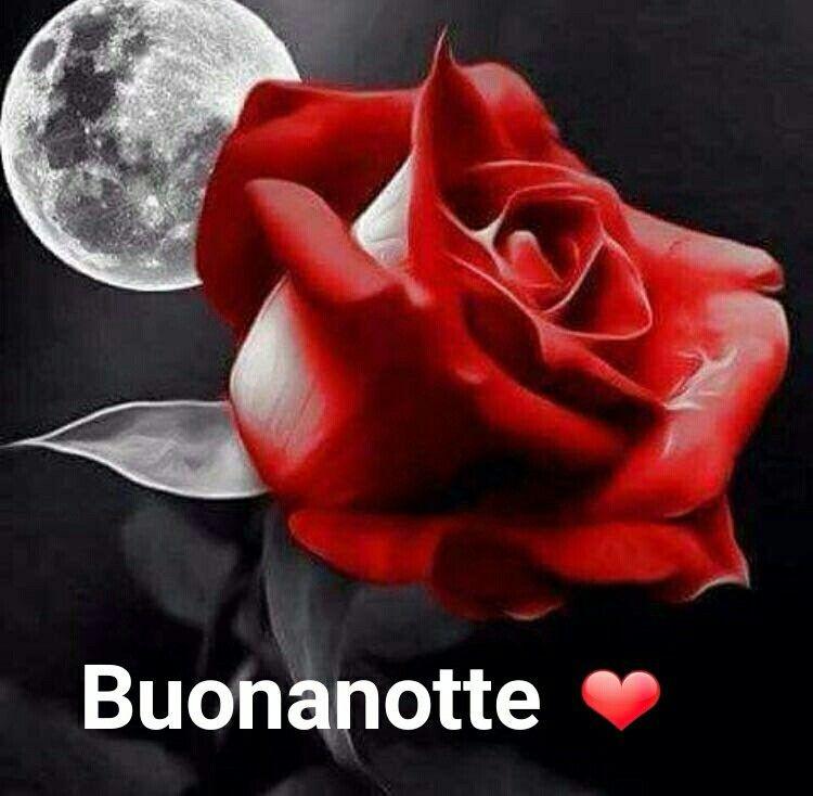 """""""Buonanotte Amore Mio"""""""