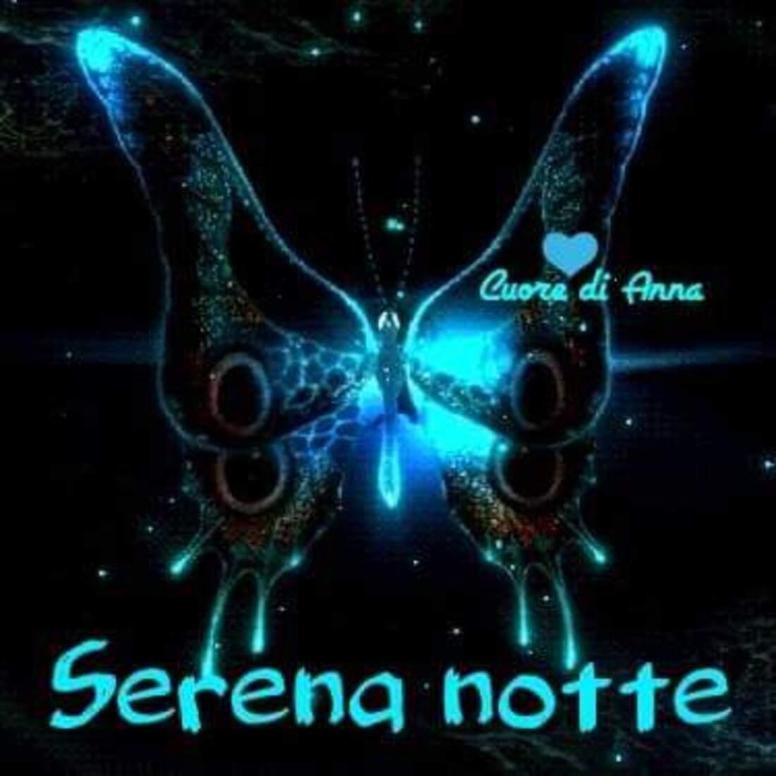 """""""Serena Notte"""""""