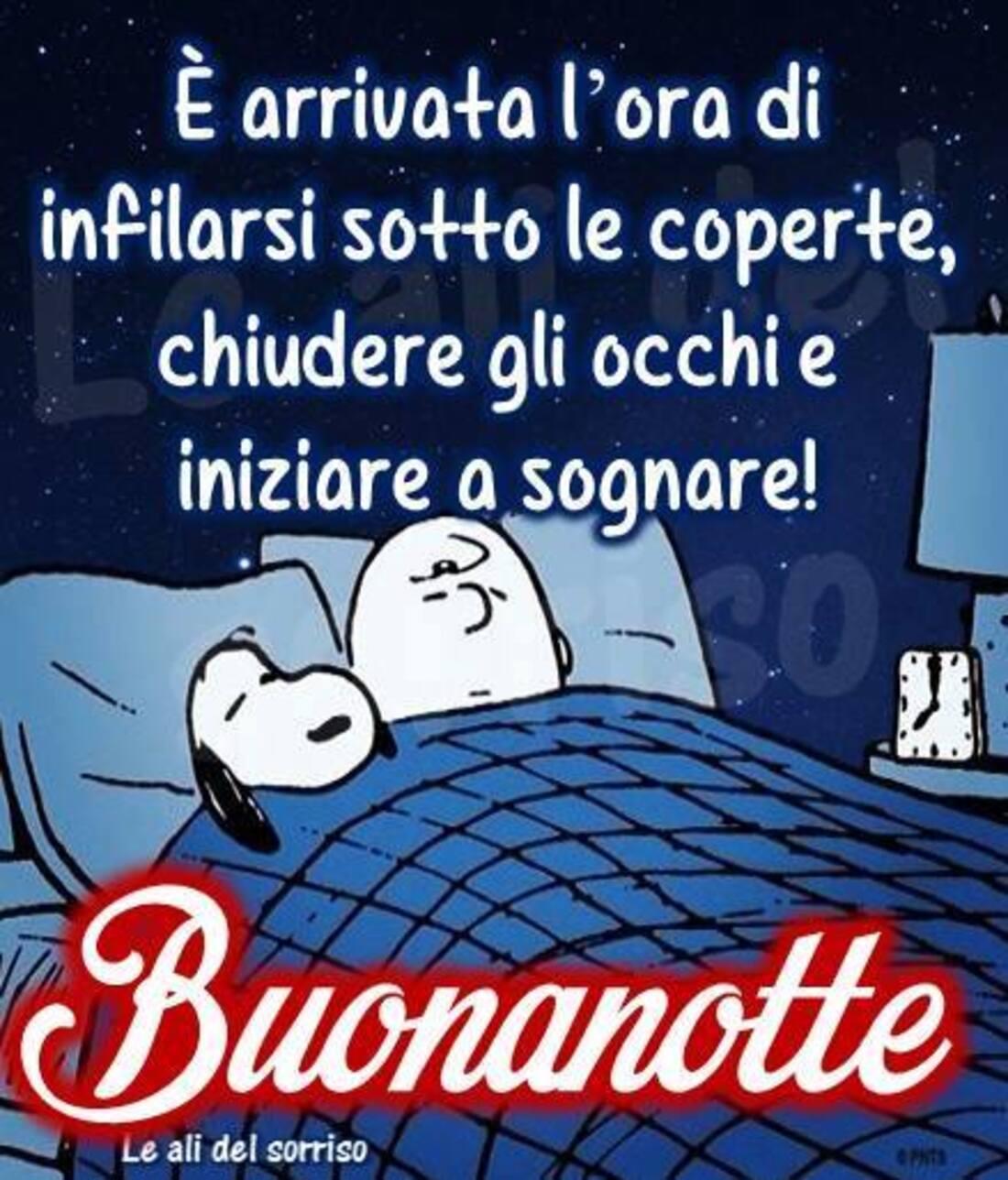 """""""E' arrivata l'ora di mettersi sotto le coperte, chiudere gli occhi e iniziare a sognare! BUONANOTTE""""  - Snoopy"""
