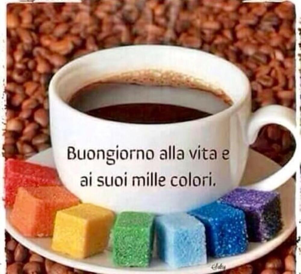 Buongiorno alla vita e ai suoi mille colori.