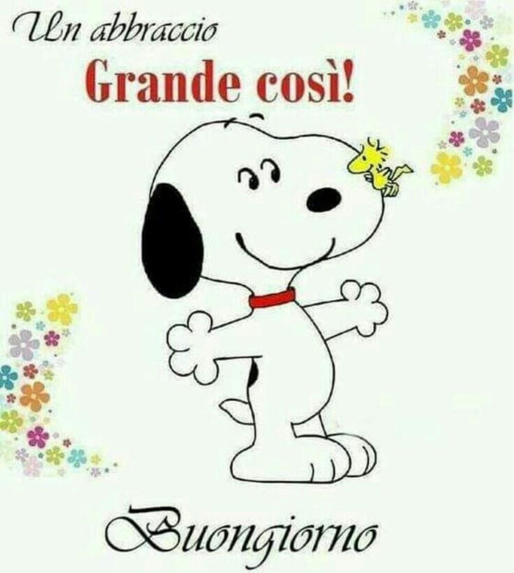 """""""Un abbraccio grande così! Buongiorno"""" - Snoopy"""