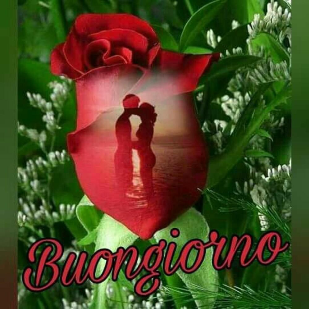 """""""Buongiorno Amore Mio"""" - belle immagini"""