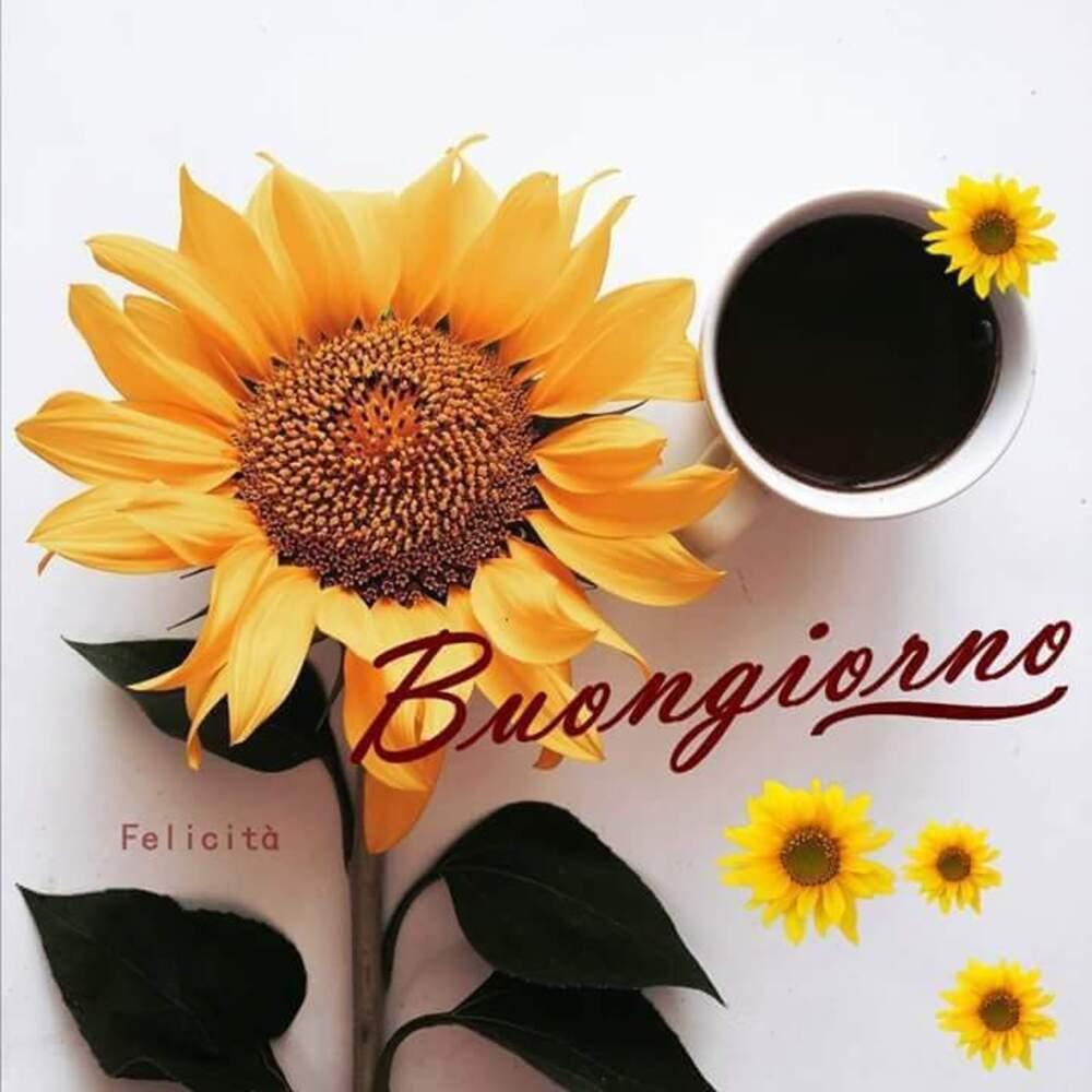Buongiorno col caffè e con un girasole