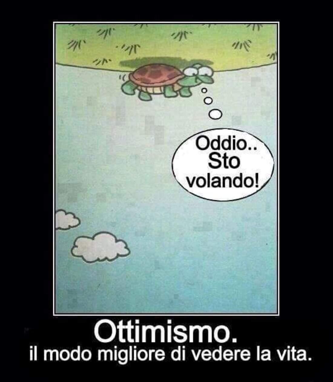 Oddio... Sto volando! Ottimismo: il modo migliore di vedere la vita.