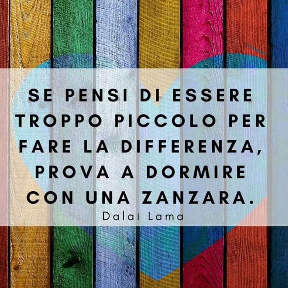 """""""Se pensi di essere troppo piccolo per fare la differenza, prova a dormire con una zanzara."""" - Dalai Lama"""