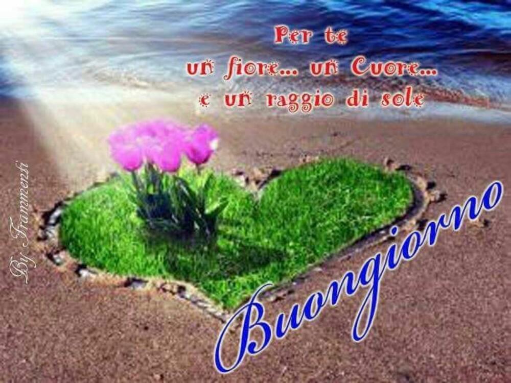 Per Te... un fiore... un Cuore... un raggio di sole... Buongiorno