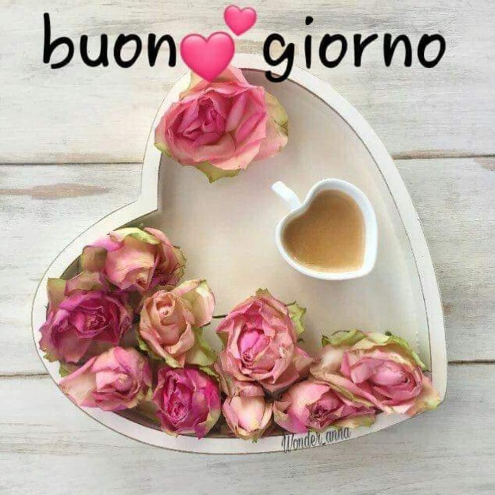 Buon Giorno con le rose