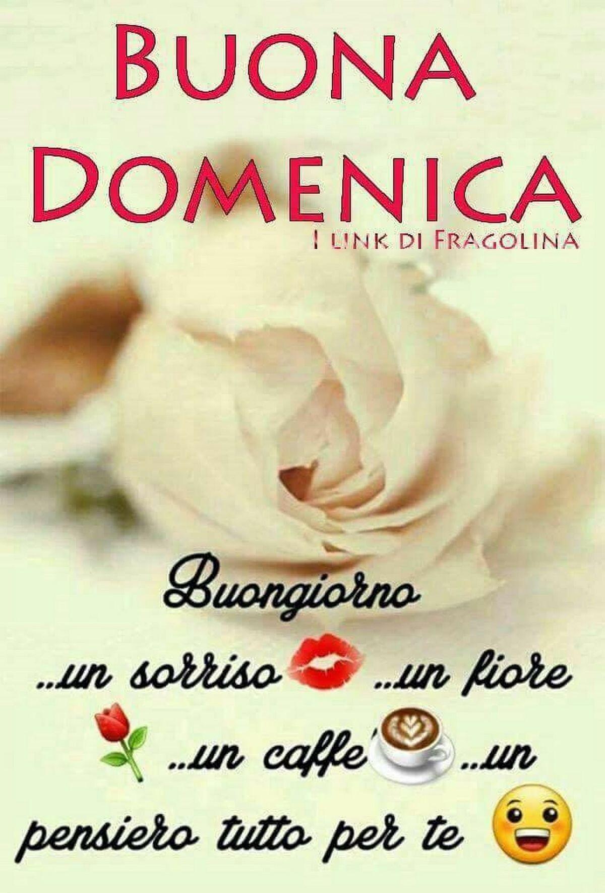 Buona Domenica Buongiorno... un sorriso... un fiore... un caffè... un pensiero tutto per te!