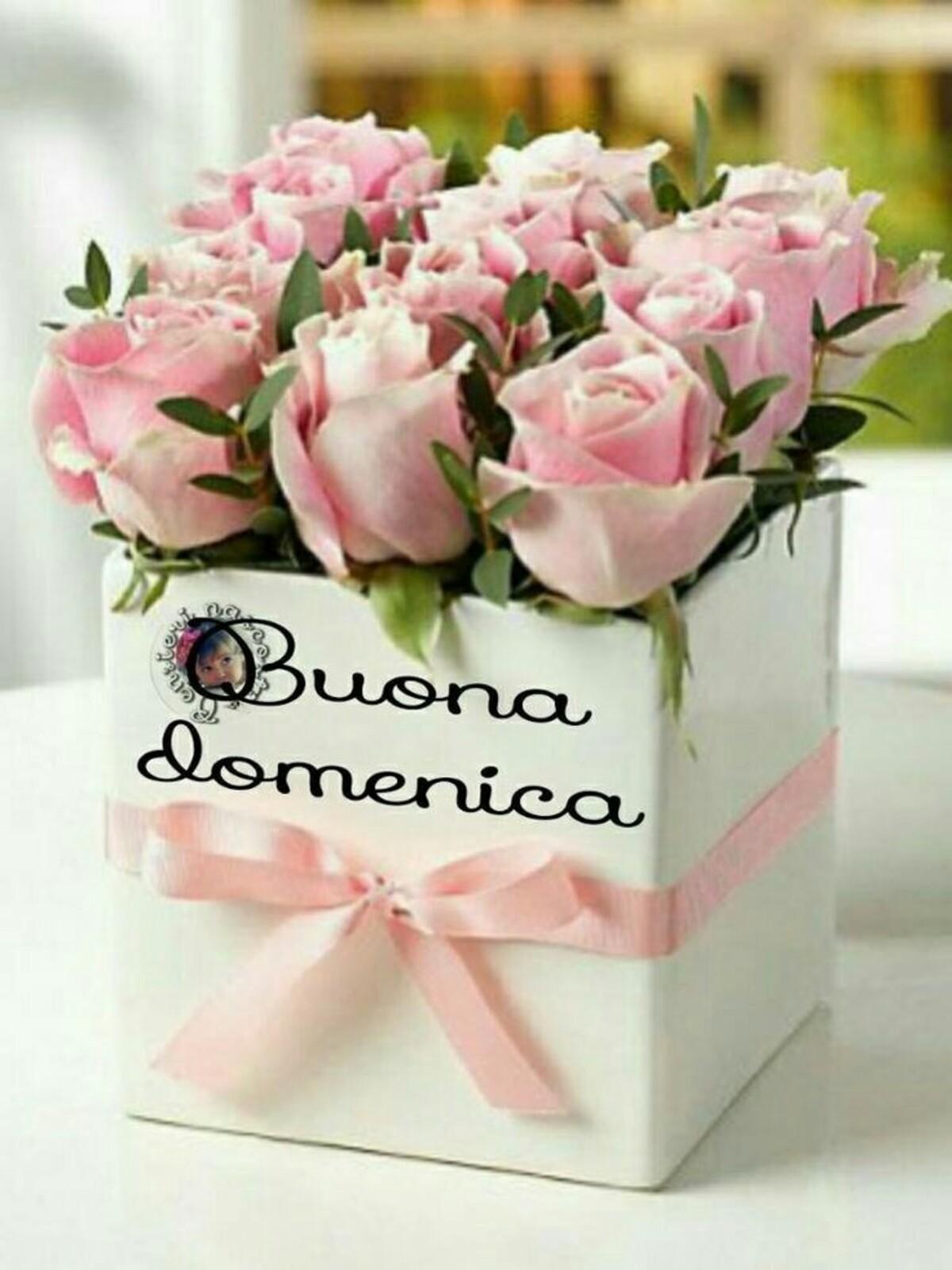 Buona Domenica con le rose